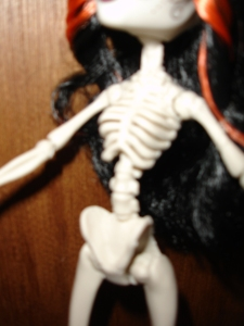 doyoulikethistoo wordpress com Monster High Skelita Calaveras review torso ribs